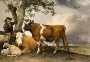 Paulus Potter De stier 1674 Nederlandse Schilderijen 17e Eeuw