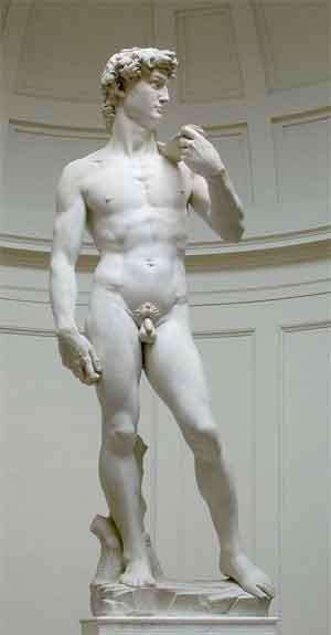 David van Michelangelo Beroemde Beelden